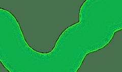 Pharmacy Courses Path